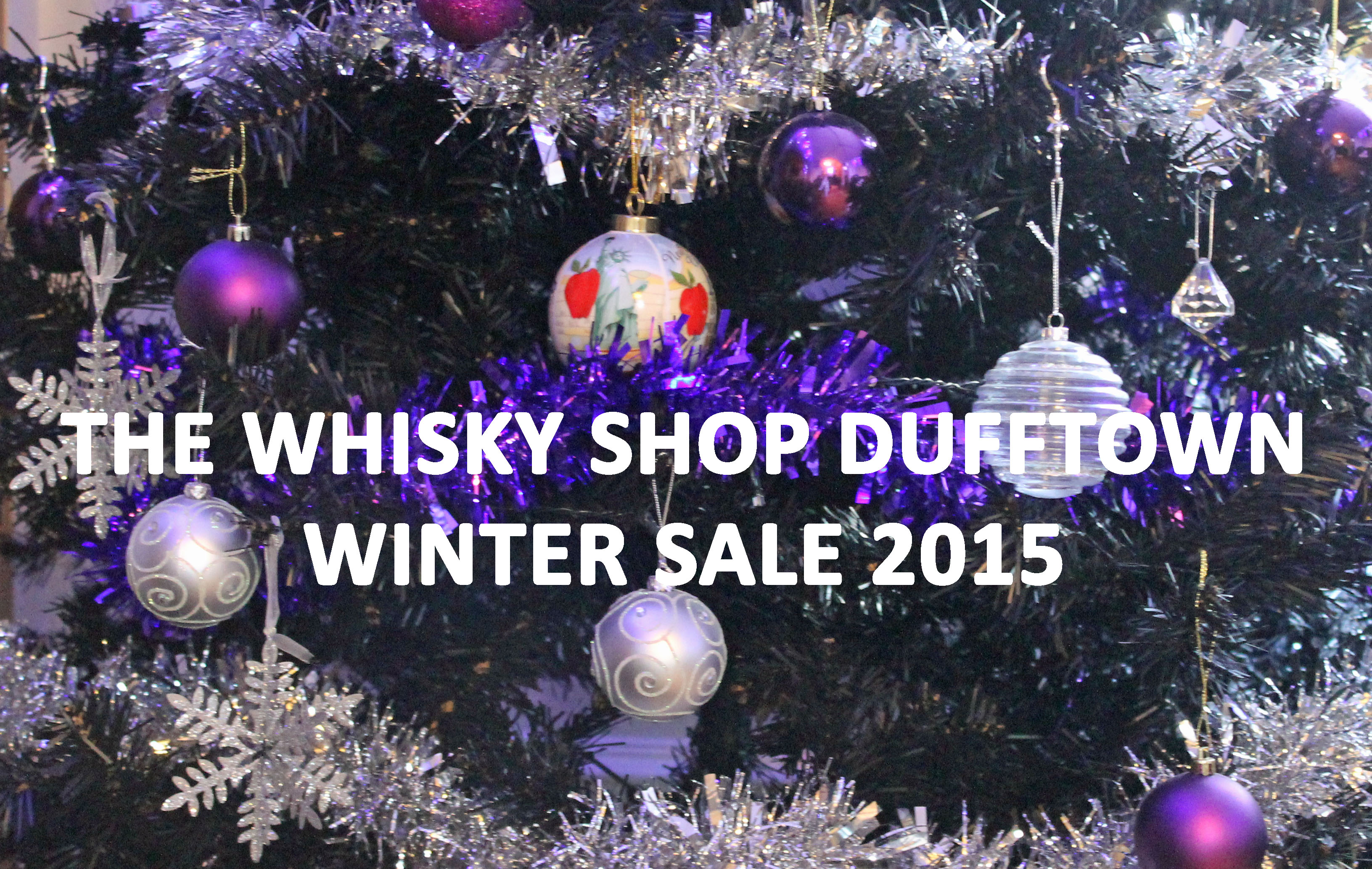 WSD Logo Winter Sale 2015